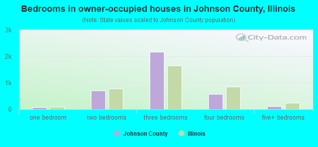 Bedrooms in owner-occupied houses in Johnson County, Illinois