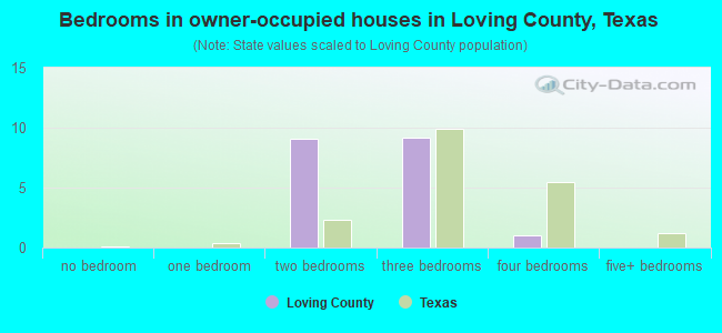 Bedrooms in owner-occupied houses in Loving County, Texas