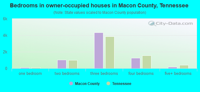 Bedrooms in owner-occupied houses in Macon County, Tennessee
