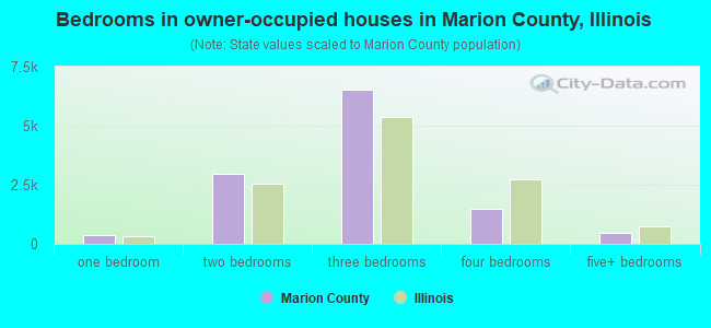 Bedrooms in owner-occupied houses in Marion County, Illinois