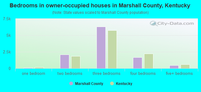 Bedrooms in owner-occupied houses in Marshall County, Kentucky