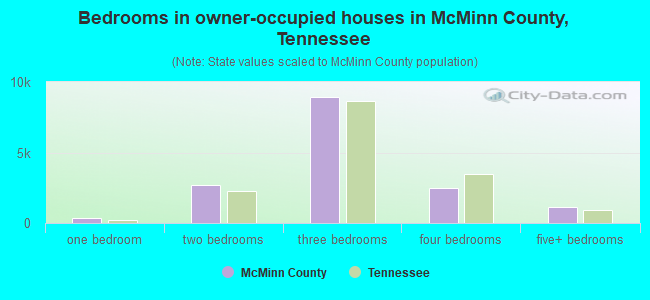 Bedrooms in owner-occupied houses in McMinn County, Tennessee