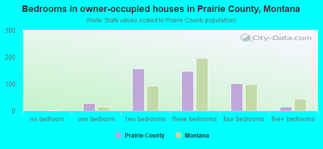 Bedrooms in owner-occupied houses in Prairie County, Montana