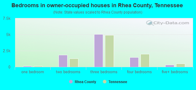 Bedrooms in owner-occupied houses in Rhea County, Tennessee