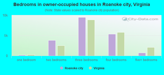 Bedrooms in owner-occupied houses in Roanoke city, Virginia