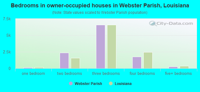 Bedrooms in owner-occupied houses in Webster Parish, Louisiana
