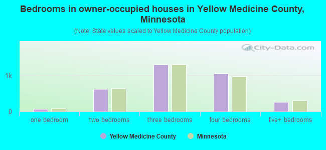 Bedrooms in owner-occupied houses in Yellow Medicine County, Minnesota