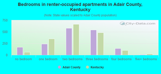 Bedrooms in renter-occupied apartments in Adair County, Kentucky