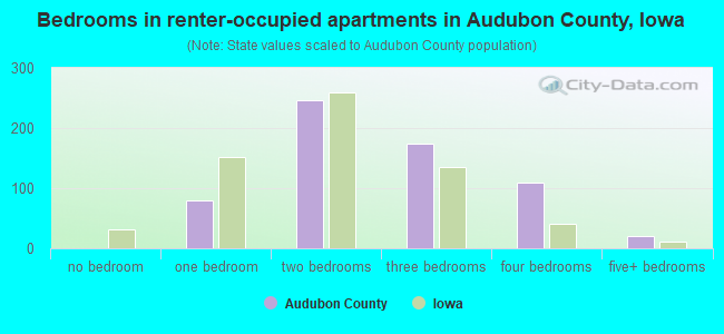 Bedrooms in renter-occupied apartments in Audubon County, Iowa