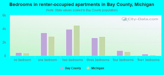 Bedrooms in renter-occupied apartments in Bay County, Michigan