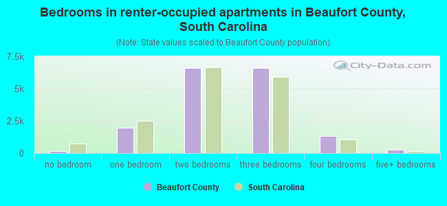 Bedrooms in renter-occupied apartments in Beaufort County, South Carolina