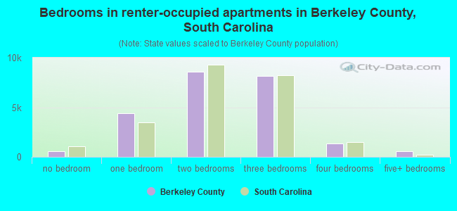 Bedrooms in renter-occupied apartments in Berkeley County, South Carolina