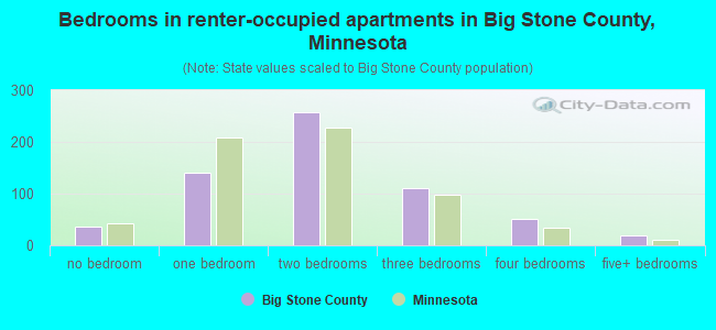 Bedrooms in renter-occupied apartments in Big Stone County, Minnesota