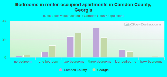 Bedrooms in renter-occupied apartments in Camden County, Georgia