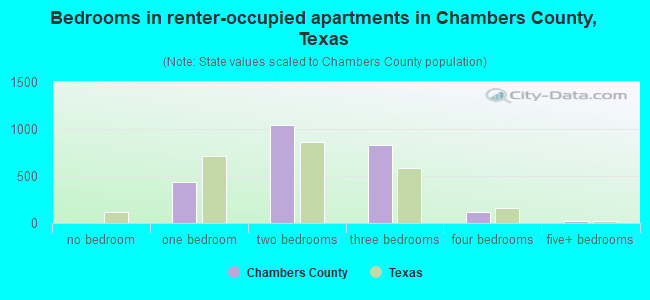 Bedrooms in renter-occupied apartments in Chambers County, Texas