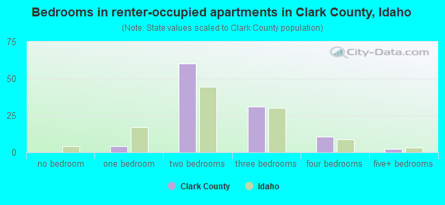 Bedrooms in renter-occupied apartments in Clark County, Idaho