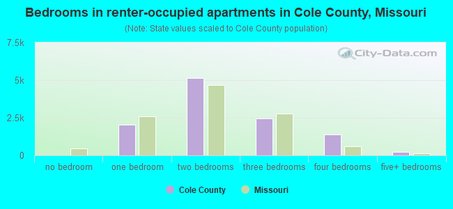 Bedrooms in renter-occupied apartments in Cole County, Missouri