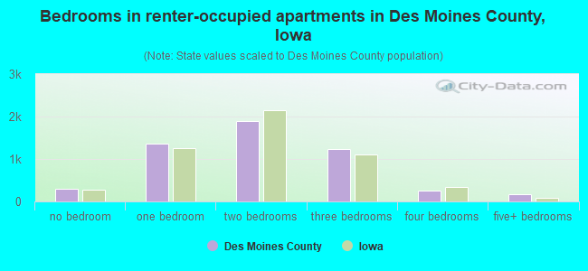 Bedrooms in renter-occupied apartments in Des Moines County, Iowa