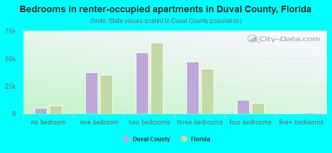 Bedrooms in renter-occupied apartments in Duval County, Florida