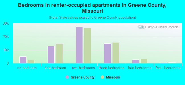 Bedrooms in renter-occupied apartments in Greene County, Missouri