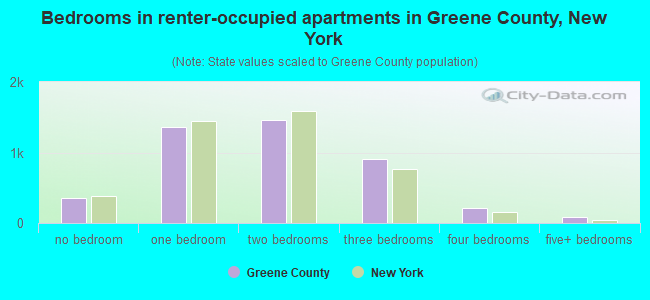 Bedrooms in renter-occupied apartments in Greene County, New York