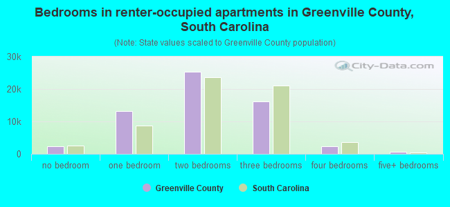 Bedrooms in renter-occupied apartments in Greenville County, South Carolina