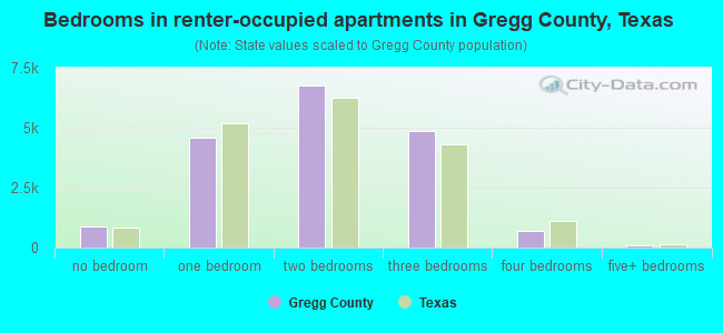 Bedrooms in renter-occupied apartments in Gregg County, Texas