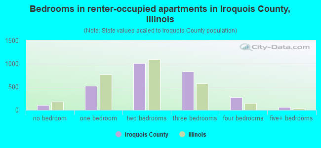 Bedrooms in renter-occupied apartments in Iroquois County, Illinois
