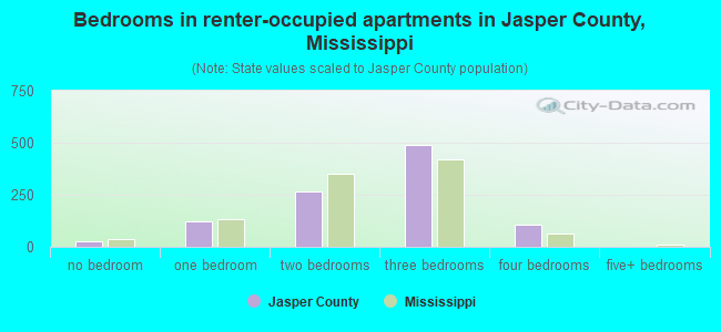 Bedrooms in renter-occupied apartments in Jasper County, Mississippi