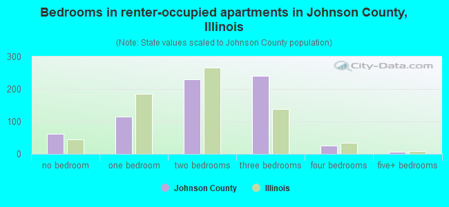 Bedrooms in renter-occupied apartments in Johnson County, Illinois
