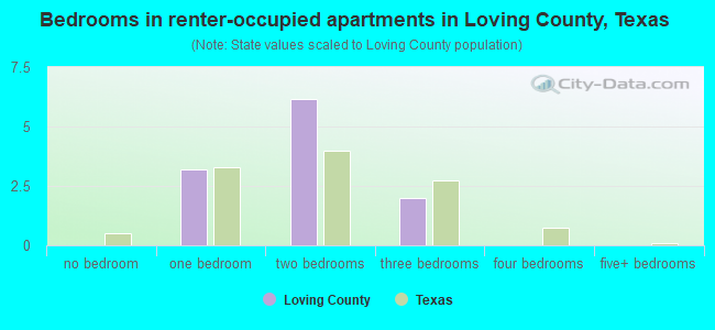 Bedrooms in renter-occupied apartments in Loving County, Texas