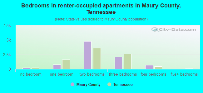 Bedrooms in renter-occupied apartments in Maury County, Tennessee