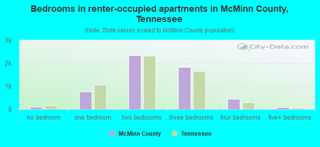 Bedrooms in renter-occupied apartments in McMinn County, Tennessee