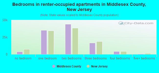 Bedrooms in renter-occupied apartments in Middlesex County, New Jersey