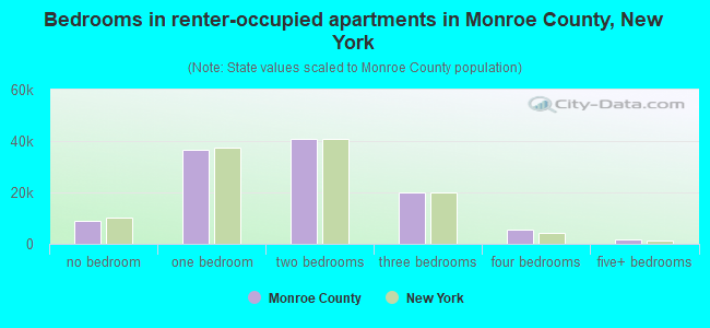 Bedrooms in renter-occupied apartments in Monroe County, New York