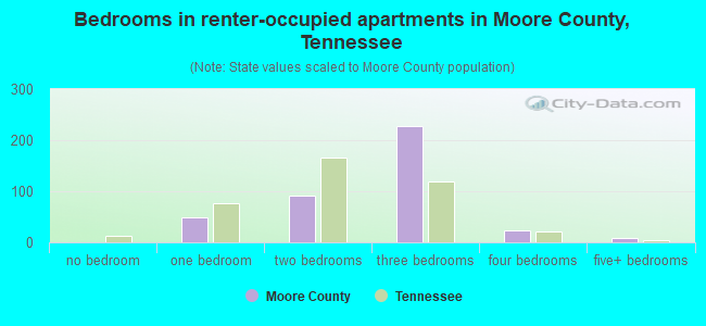 Bedrooms in renter-occupied apartments in Moore County, Tennessee