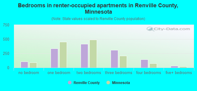 Bedrooms in renter-occupied apartments in Renville County, Minnesota
