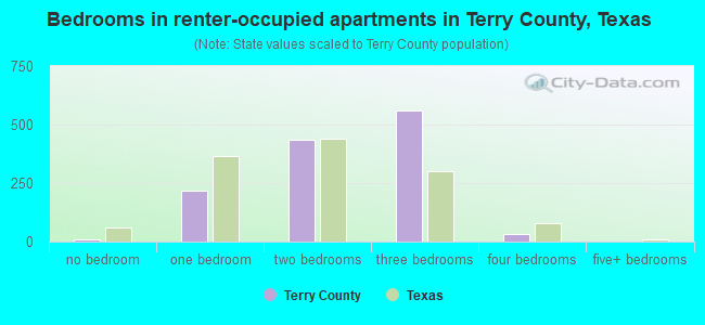 Bedrooms in renter-occupied apartments in Terry County, Texas