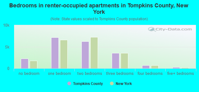 Bedrooms in renter-occupied apartments in Tompkins County, New York