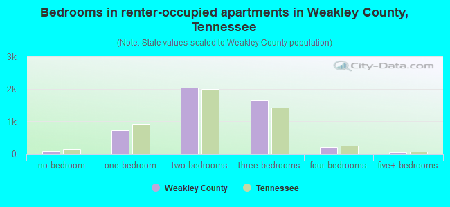 Bedrooms in renter-occupied apartments in Weakley County, Tennessee