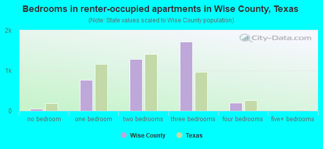 Bedrooms in renter-occupied apartments in Wise County, Texas