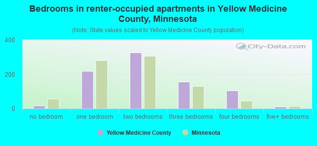 Bedrooms in renter-occupied apartments in Yellow Medicine County, Minnesota