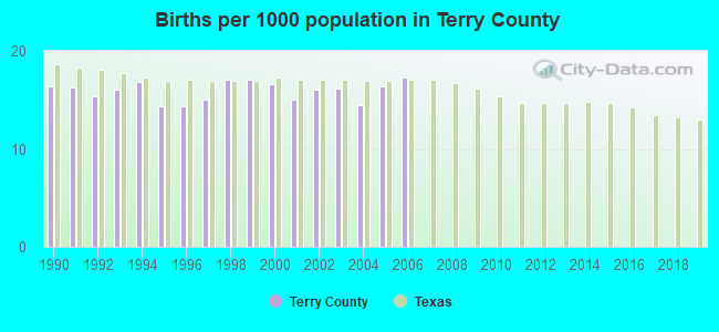 Births per 1000 population in Terry County