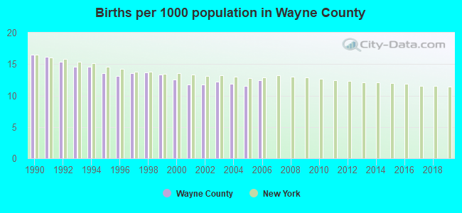 Births per 1000 population in Wayne County