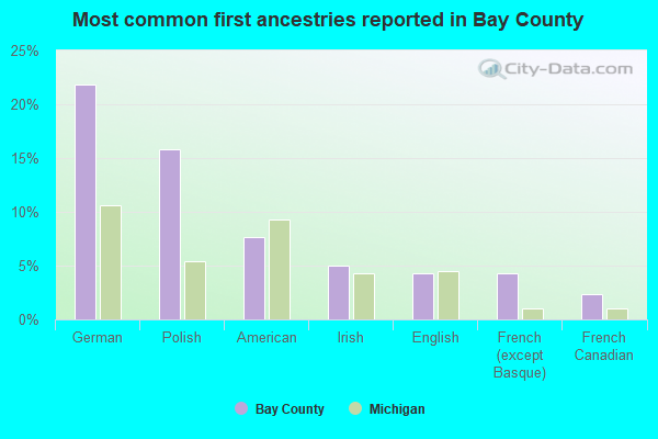 Most common first ancestries reported in Bay County
