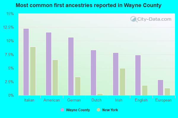 Most common first ancestries reported in Wayne County