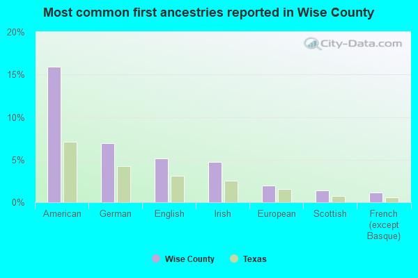 Most common first ancestries reported in Wise County