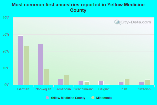 Most common first ancestries reported in Yellow Medicine County