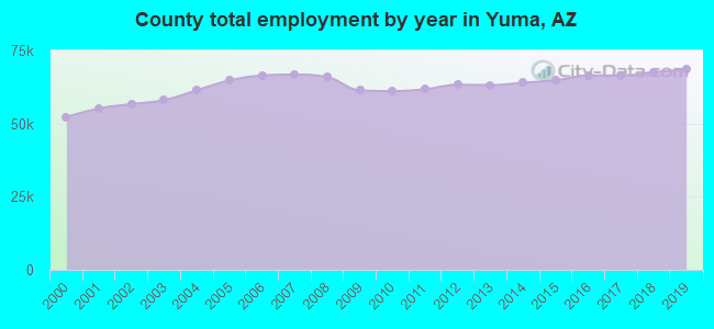 County total employment by year