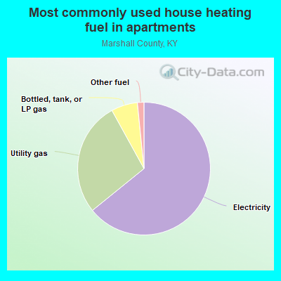 Most commonly used house heating fuel in apartments